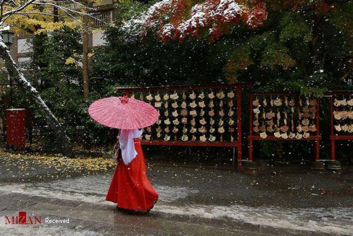 بارش برف در ژاپن