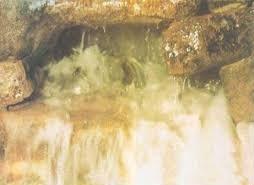 «آب زمزم» را سمی کردهاند؟